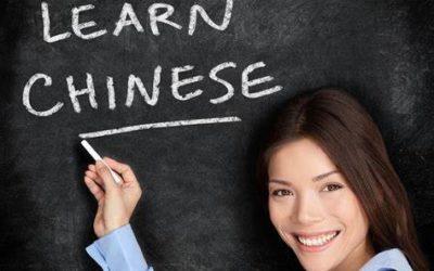 BILAN Nº1 : Défi chinois 200 jours – ANKI Power !
